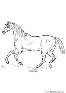 coloring pages of paint horses paint coloring pages