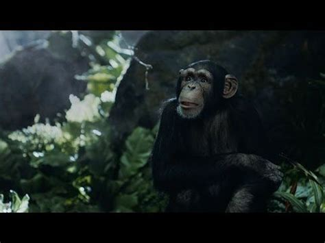 who is the girl in tarzan geico commercial tarzan fights over directions it s what you do geico