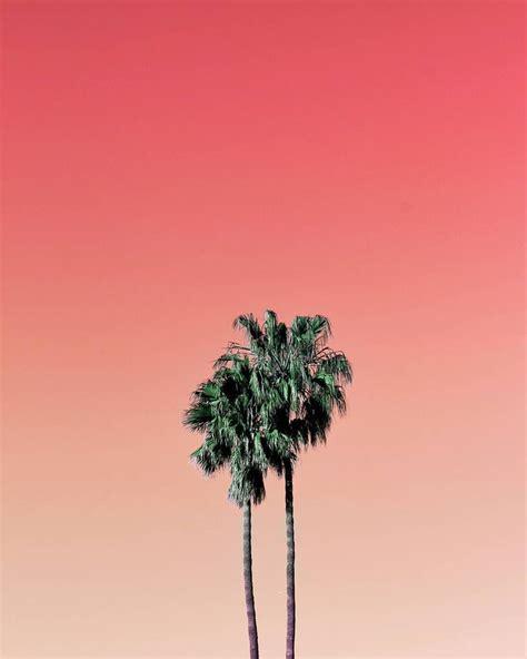 best 25 minimalist photography ideas on pinterest