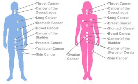 types of cancer skin cancer stomach cancer blood cancer