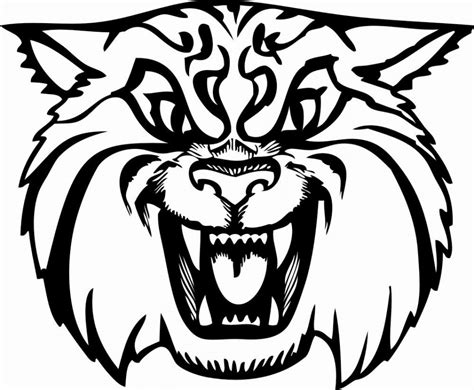 wildcat clipart free cliparts co