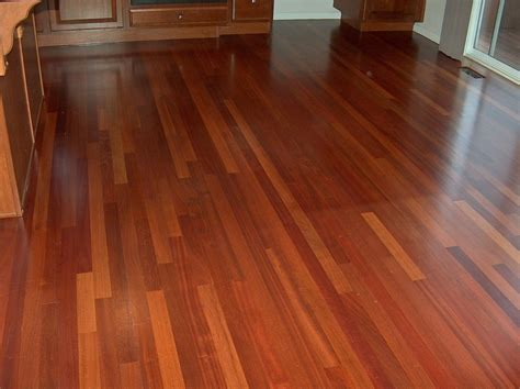Red Kitchen Design Ideas brazilian cherry hardwood flooring and dogs natural