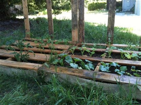 Garden Ideas With Pallets 10 Pallet Vegetable Garden Ideas Pallets Designs