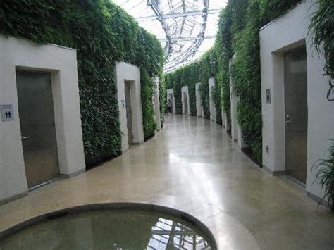 Bathroom Design Ideas Walk In Shower bathrooms picture of longwood gardens kennett square