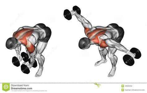average bench press for men average bench press for men weight lifting bench press