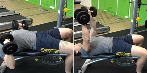 dumbbell bench press variations how to decline dumbbell bench press ignore limits