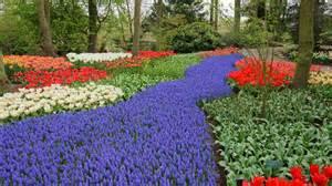 plus beau jardins meilleures id 233 es cr 233 atives pour