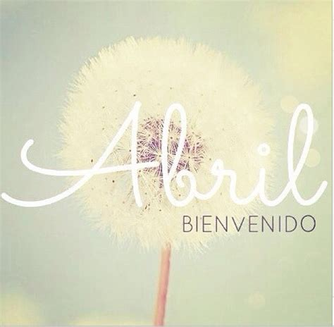 sounds for a life abril abril bienvenido products i love