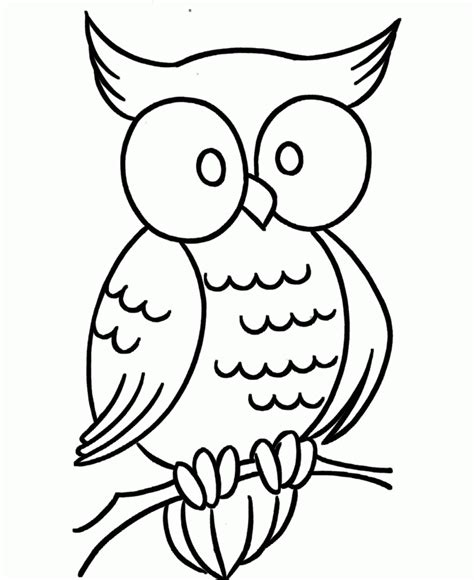 owl printables for preschoolers 36 free printable owl coloring pages gianfreda net