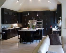dark kitchen cabinets ideas modern dark wood kitchen cabinets home design ideas