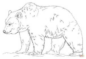 Grizzly Bear Coloring Page Free Printable Coloring Pages Grizzly Coloring Page