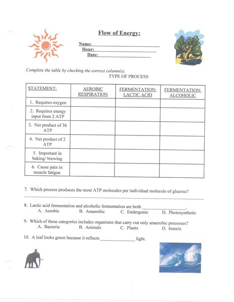Biology 8 1 Energy And Worksheet Answers by Potential Energy Diagram Worksheet Abitlikethis