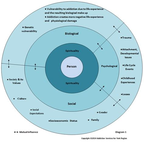 circle of grief diagram 생물심리사회적 모델 bio psycho social model 네이버 블로그