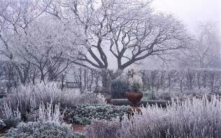 5 tips to creating the perfect winter garden