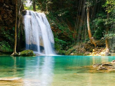 tropical waterfall animated wallpaper download