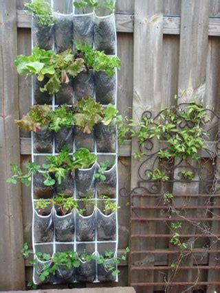 Shoe Rack Planter by Space Saving Tips For Gardens Gardens Nyc
