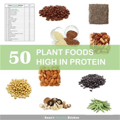 plant protein recipes that youã ll enjoy the goodness and deliciousness of 150 healthy plant protein recipes books top 50 plant foods high in protein s healthy kitchen
