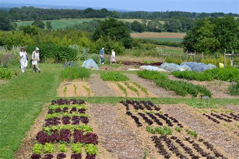 Our No Dig Veg Garden 6 Months In Sissinghurst Garden No Dig Vegetable Gardening