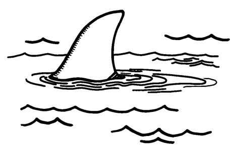 shark fin coloring page scholastic canada book fairs webart