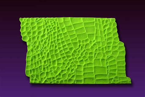 Impression Mat by Alligator Impression Mat By Elisa Strauss Silicone