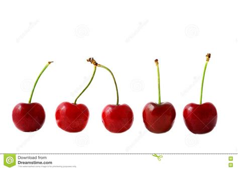 Cherry On White cherry objects on white background royalty free stock