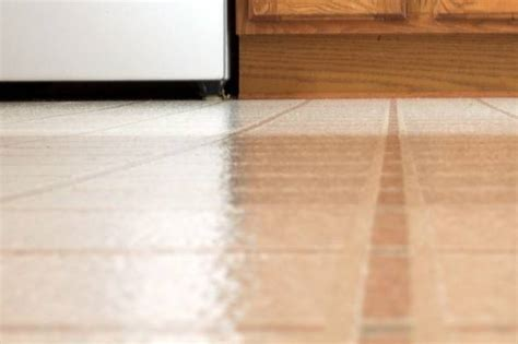 pavimenti linoleum prezzi pavimenti in linoleum pavimentazioni