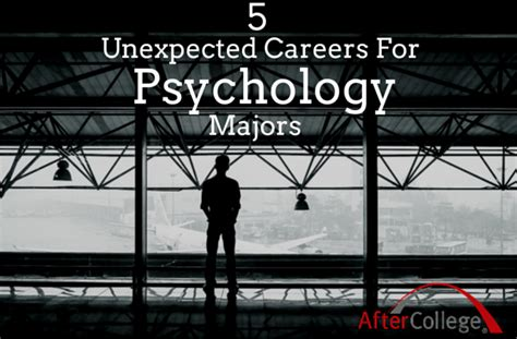 you majored in what designing your path from college to career 5 career options for psychology majors