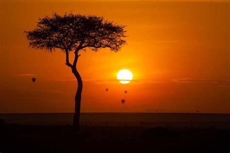 masai mara kenya tourism  travel guide top places