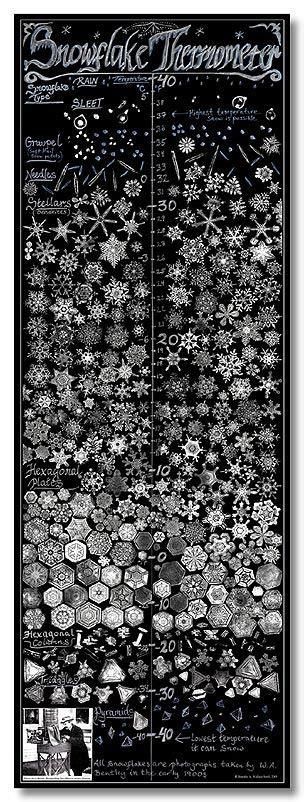 snowflake bentley prints 25 unique snowflake images ideas on images of