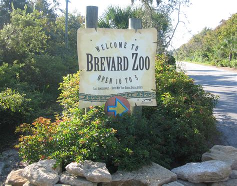 Brevard Search Brevard Zoo Zip Line Coupons Search Engine At Search