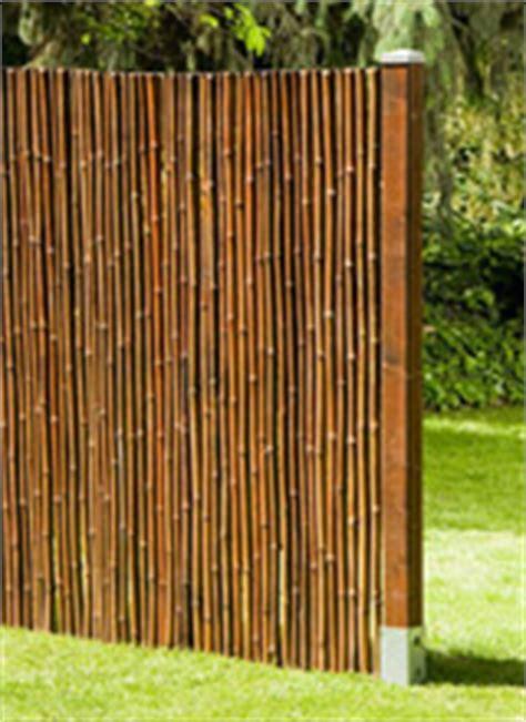 Sichtschutz Garten Pflanzen 106 by Bambus Aus Engelskirchen Viele Bambussorten In