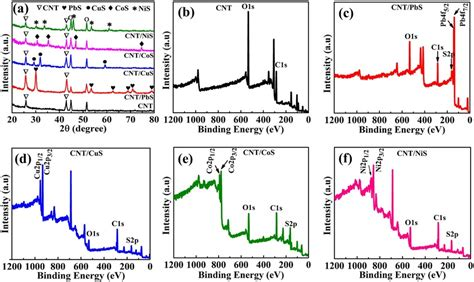 xrd pattern of pbs a xrd patterns of cnt and cnt metal sulfide composites