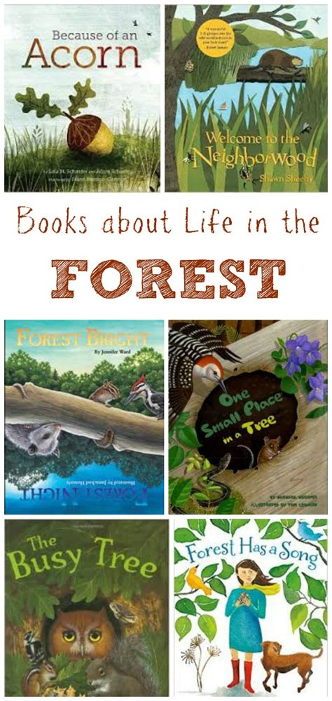 the of the forest books children s books about the forest edventures with
