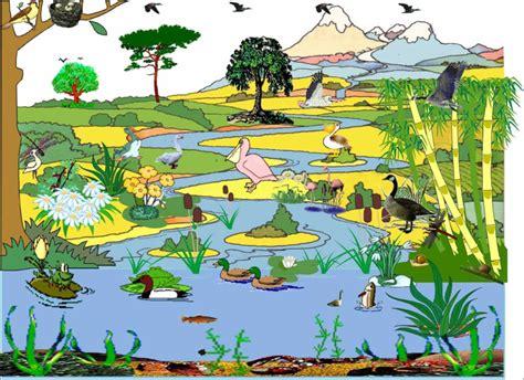 catena alimentare fiume il fiume pdf