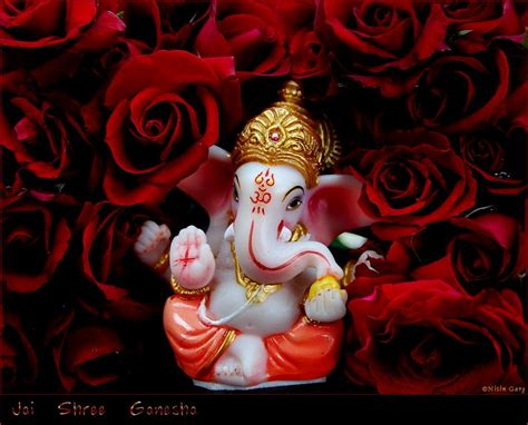 ganpati mp3 dj remix song download snr dj ganpati special dj remix songs dawnload