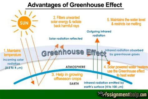 Greenhouse Effect Essay Pdf by Write Essay On Media