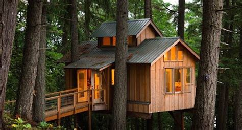 Want To Live In A Fully Functional Treehouse Video Livable Tree House Plans