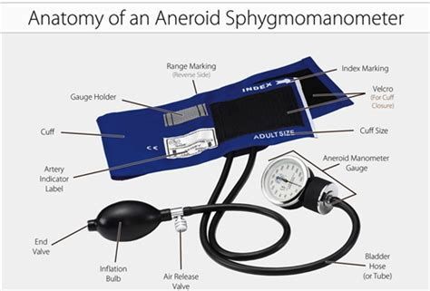Tensimeter Aneroid Riester Type Palm labeled diagram of stethoscope labeled free engine image