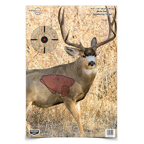 free printable deer targets for shooting deer vitals target pictures to pin on pinterest pinsdaddy