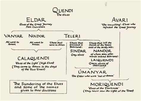 Different Types Of Trees What Are The Various Species Of Elves In Middle Earth Is