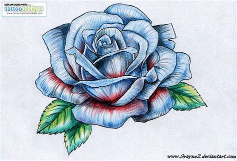 blue and black rose tattoo drawings of roses and butterflies drawings