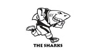 sharks contract 8 junior rugby stars
