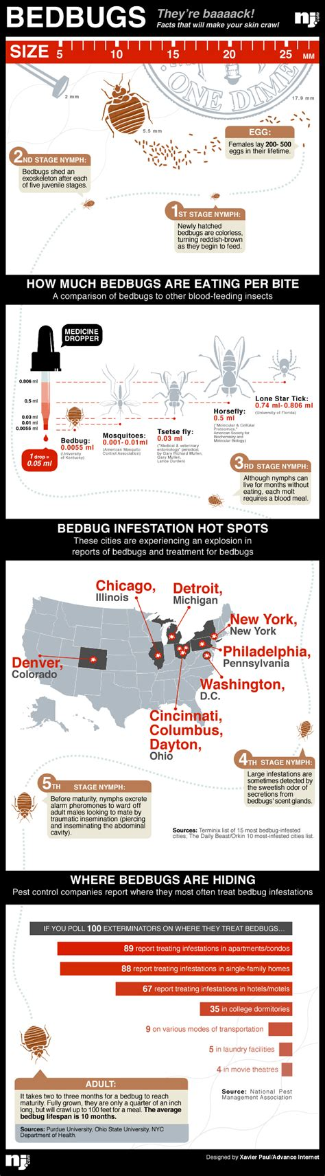Dispose Mattress Nyc by Bed Bug Mattress Removal Nyc Bed Furniture Decoration