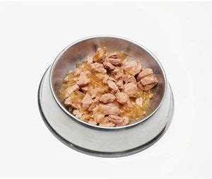 high fiber puppy food what are the benefits of high fiber food the pets central