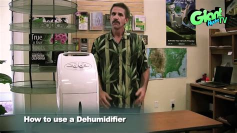 How To Dehumidify A Room by How To Use A Dehumidifier In Your Indoor Grow Room