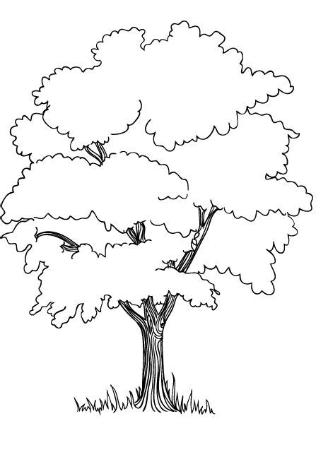 Coloring Pages Of Jungle Trees | the trees in the jungle coloring pages jungle safari vbs