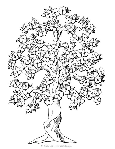 free coloring pages of trees and flowers flower my coloring land