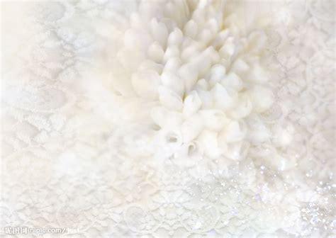 White Free - 清新背景设计图 背景底纹 底纹边框 设计图库 昵图网nipic