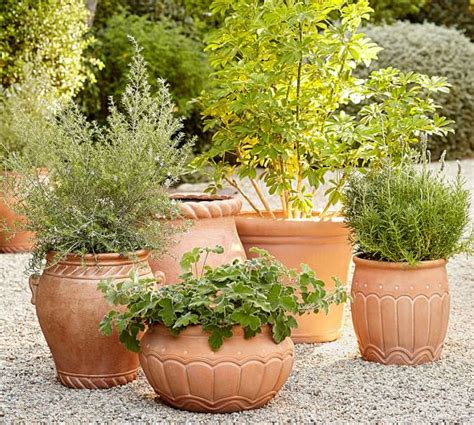 Pottery Barn Planters by Umbria Planters Pottery Barn