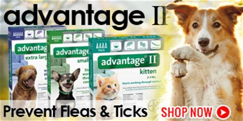 gentizol for dogs pet supplies vet supplies supplies heartland